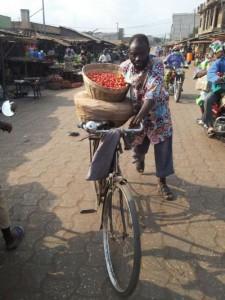 Un cycliste transportant tas de tomates au marché Ouando, Porto Novo, Bénin